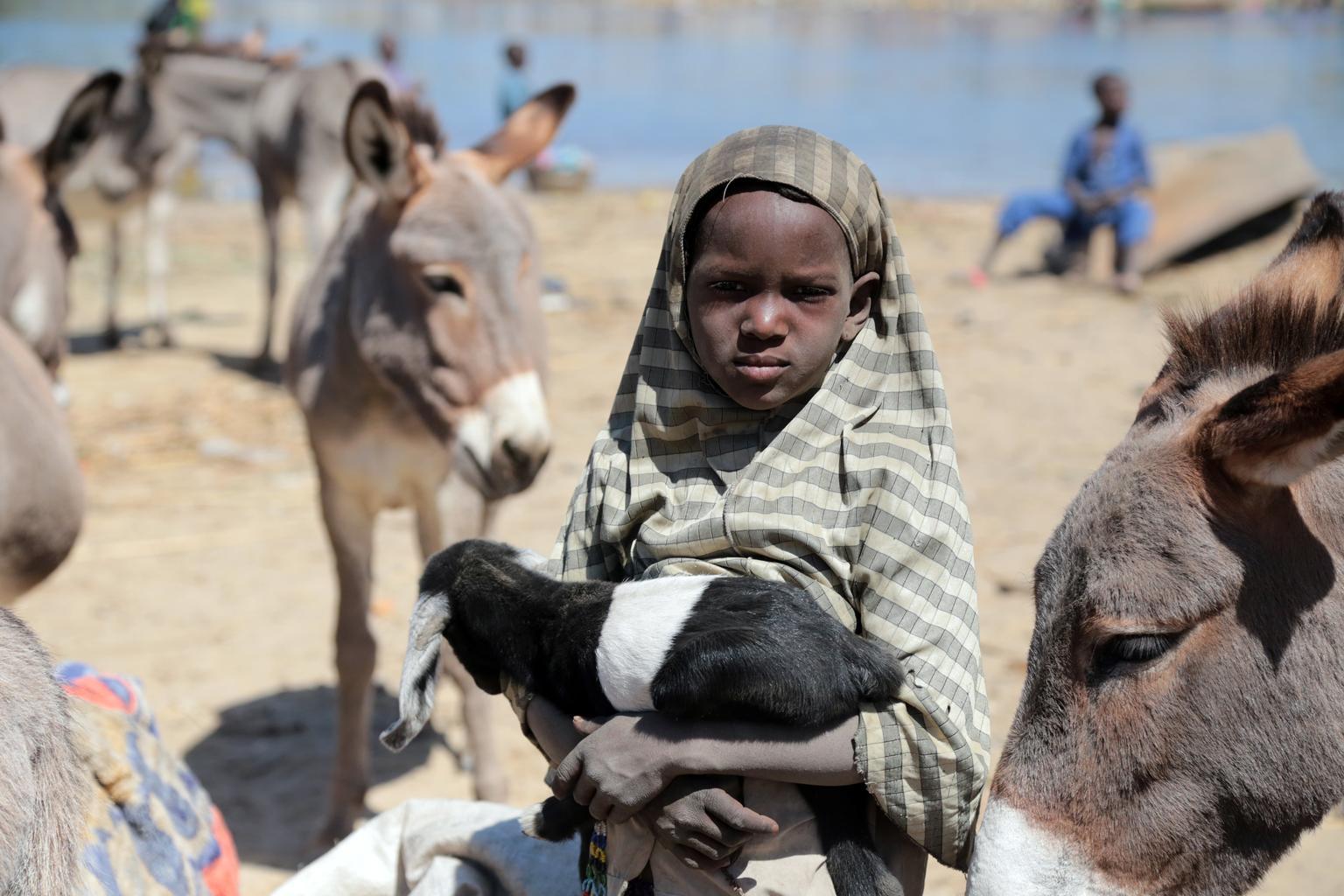 UNICEF/NYHQ2015-0123/Moreno