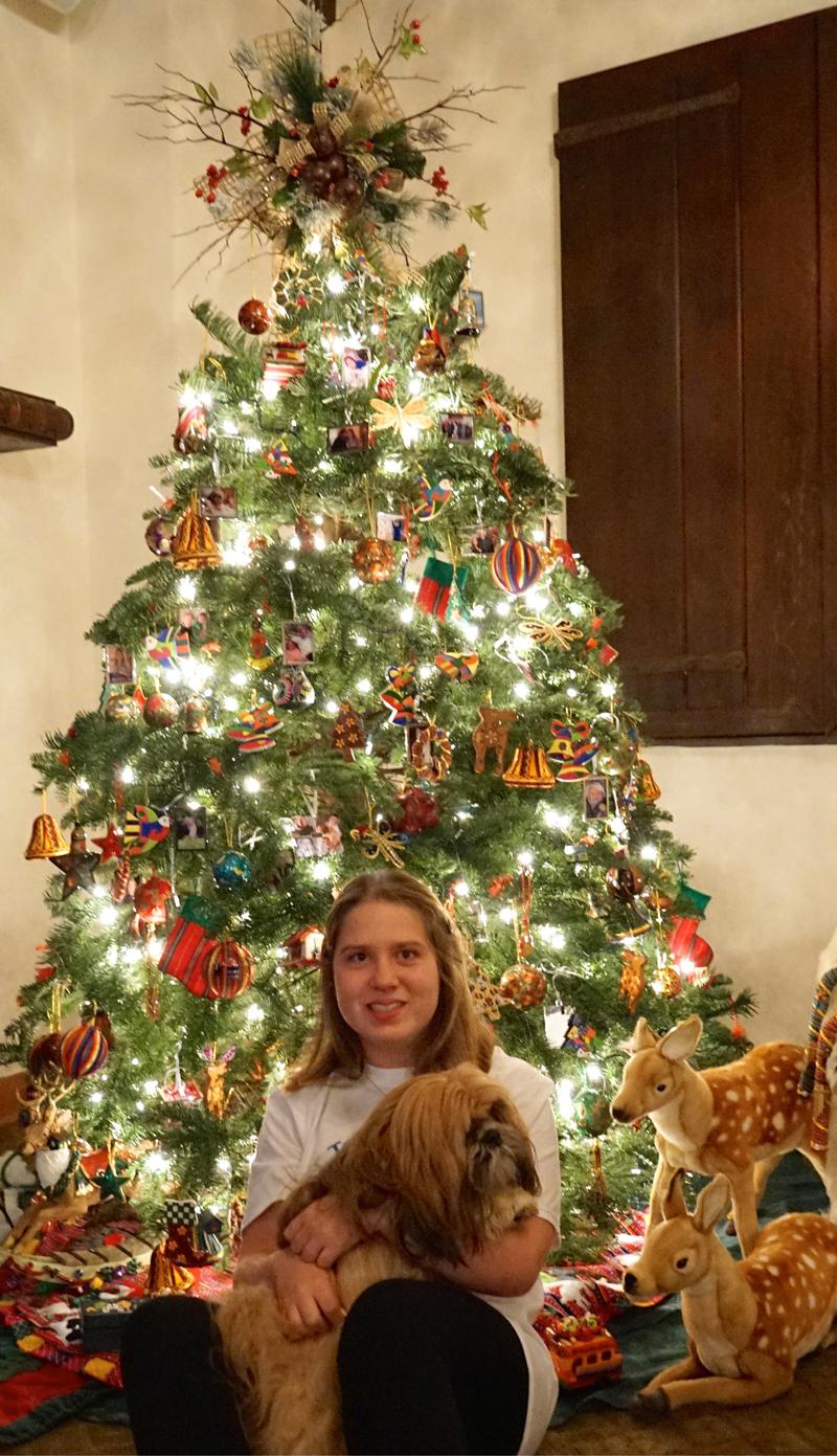 Jamie's UNICEF Market Christmas Tree