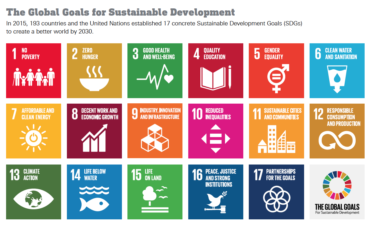 The U.N.'s 17 Sustainable Development Goals for 2030
