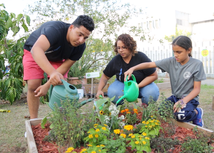Money raised by children Trick-or-Treating for UNICEF helped create community gardens run by Boys & Girls Clubs of Puerto Rico after Hurricane Maria.