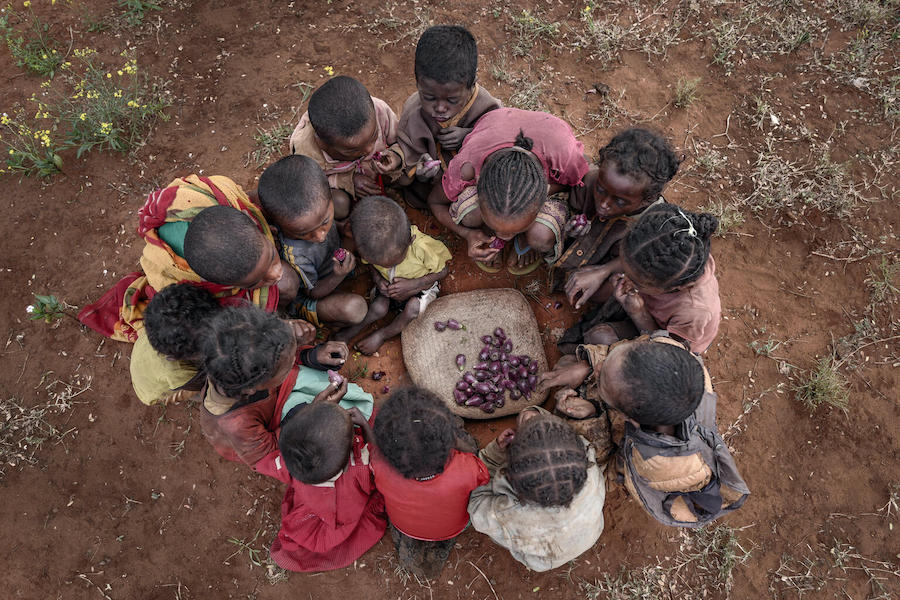 Children in the drought-affected, food insecure Androy region of Southern Madagascar share a basket of prickly pears.