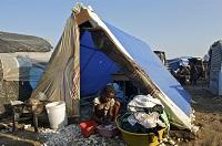 NextGen Haiti 2010