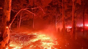 Burning embers cover the ground as firefighters battle against brushfires around the town of Nowra in the Australian state of New South Wales on December 31, 2019.