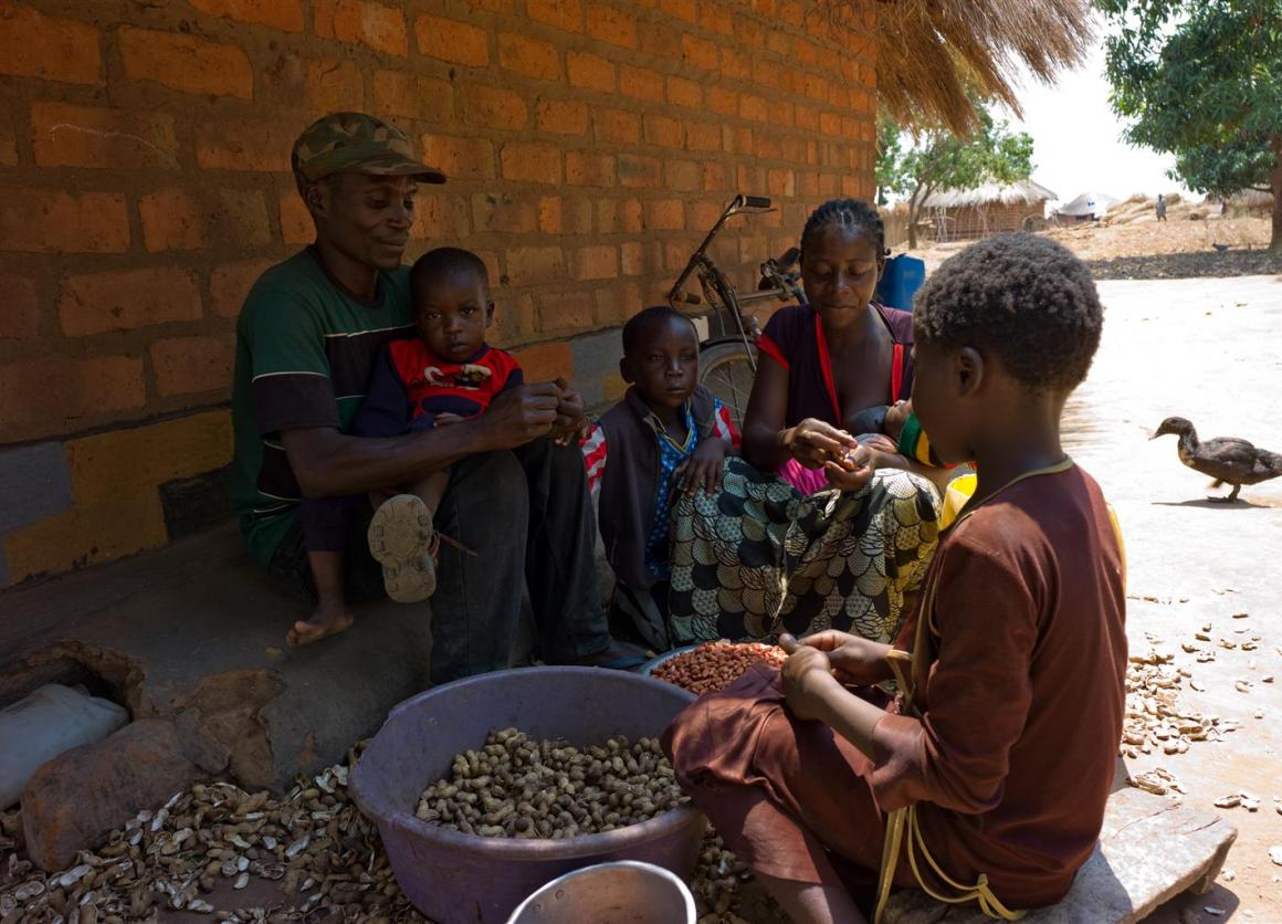 Lightson Ngonga and his wife Loveness Mwenya shell groundnuts with some of their children in Kabwe village in Zambia's Northern Province. The family benefits from a social cash transfer program. © UNICEF/ZAMA2011-0233/Nesbitt
