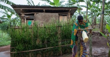 Josephine Mukonyezi, a 26-year-old mother of six, washes her hands at the tippy tap outside her family's latrine in Mutwe Village, Kamwenge district, Uganda in 2019.