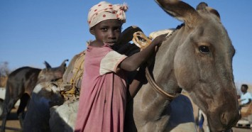 While collecting water, a young girl stands holding her donkey near a water point outside her village in Sudan.