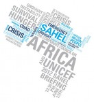 Sahel-Briefing-Africa-sm